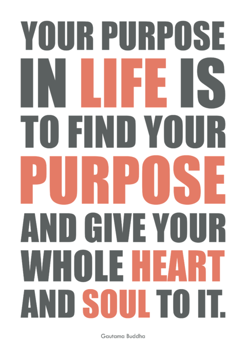 find your purpose in life